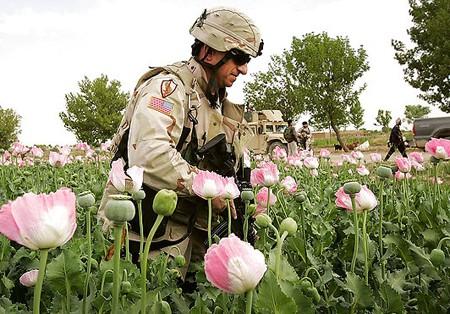 us_opium